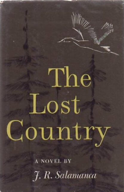 cover of The Lost Country by J.R. Salamanca