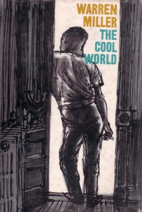 The Cool World book cover