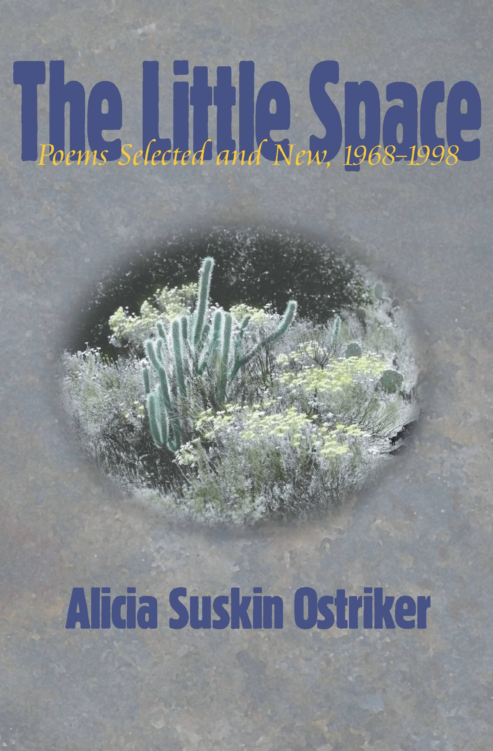 The Little Space- Poems Selected and New, 1968-1998 by alicia suskin ostriker book cover