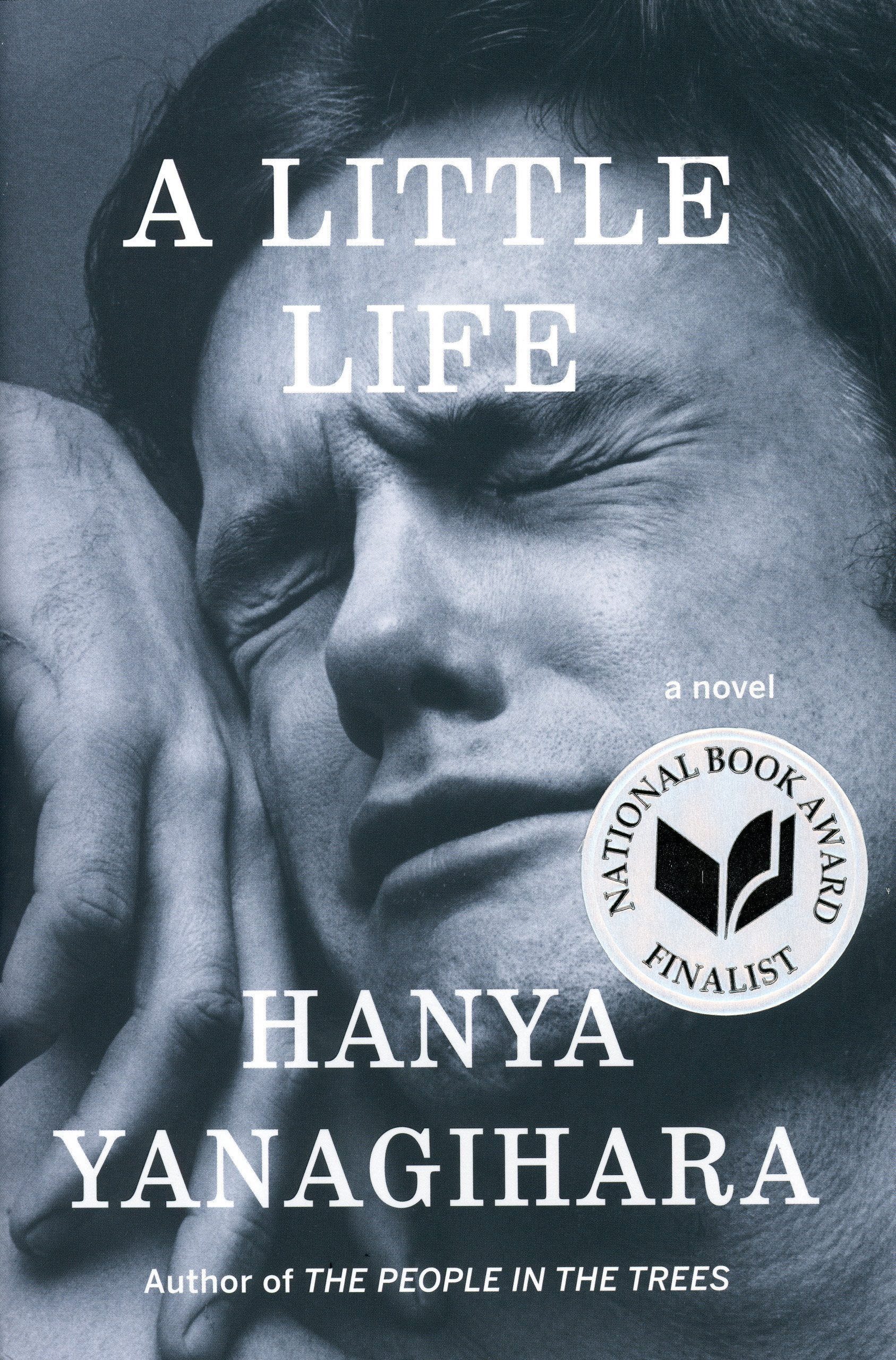 A Little Life by Hanya Yanagihara book cover, 2015