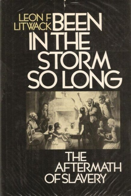 cover of Been In The Storm So Long by Leon F Litwack