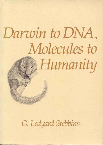 cover of Darwin to DNA by G Ledyard Stebbins