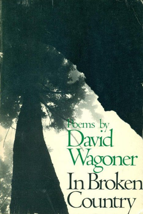 cover of In Broken Country by David Wagoner