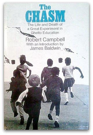 cover of The Chasm by Robert Campbell