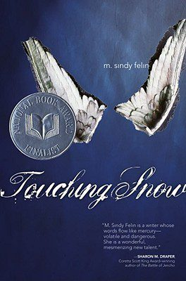 Touching Snow by M. Sindy Felin book cover, 2007