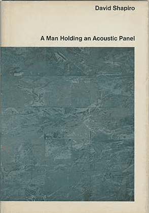 A man holding an acoustic panel, by David Shapiro, book cover