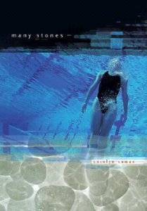 Carolyn Coman – Many Stones book cover